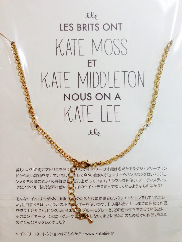 マイリトルエナジーボックス 2015年1月 キャンペーン kate lee
